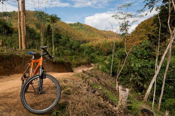 Jeden z naszych rowerów