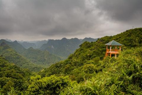 W drodze na szczyt Ngu Lam